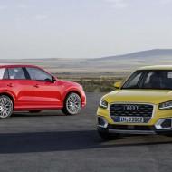 Audi Q (19)