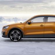 Audi Q (3)