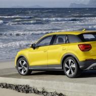 Audi Q (8)