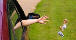 Штраф за выброс мусора на дорогу будут фиксировать камеры