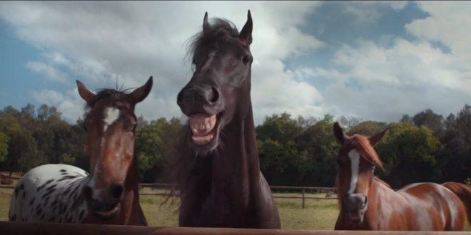 """Новая реклама Volkswagen Tiguan или """"Коням не на смех..."""""""