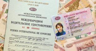 Как получить водительские права международного образца